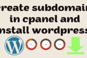How To Create Subdomain In Cpanel And Install WordPress