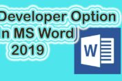 Developer Option In MS Word 2019