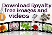 Royalty free images and videos download